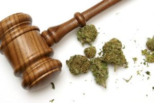 Car Accidents in Colorado on the Rise After Pot Legalized | Colorado Springs Car Accident Lawyer